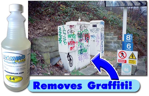 Blammo PLUS® Erases Unsightly Graffiti